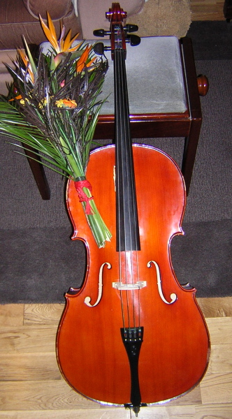 cello with flowers from Steven Isserlis.JPG